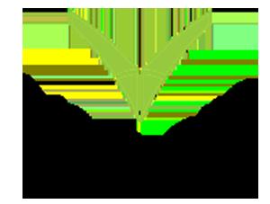 verbero-logo